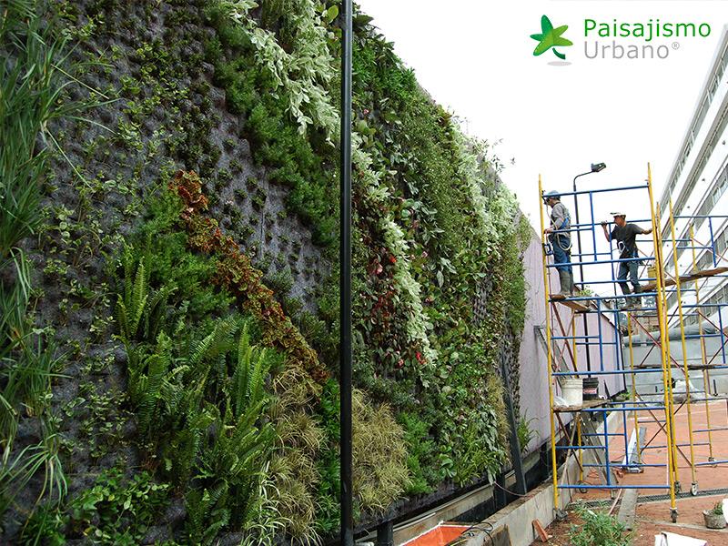 img-jardines-verticales-universidad-de-los-andes-colombia-4