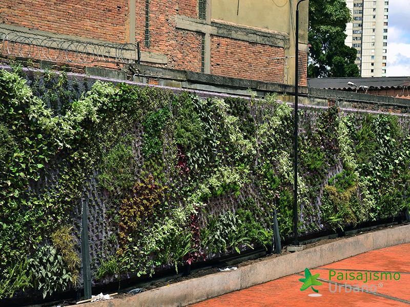 img-jardines-verticales-universidad-de-los-andes-colombia-5