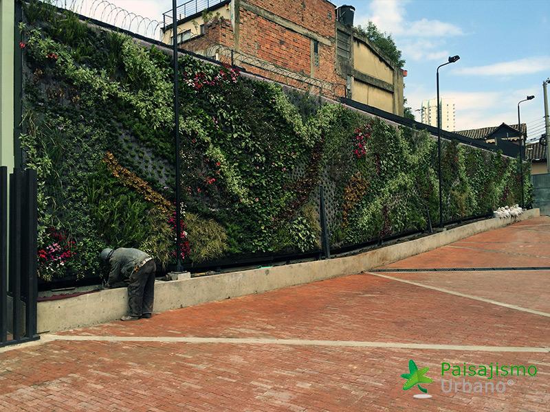 img-jardines-verticales-universidad-de-los-andes-colombia-7