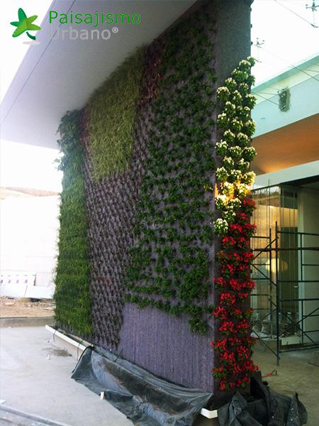 img-muros-verdes-residencia-morelia-mexico-11