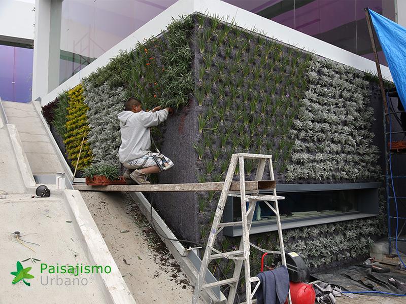 img-muros-verdes-residencia-morelia-mexico-13