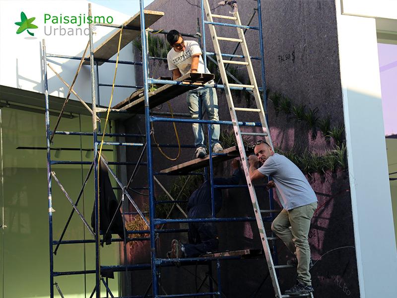 img-muros-verdes-residencia-morelia-mexico-15