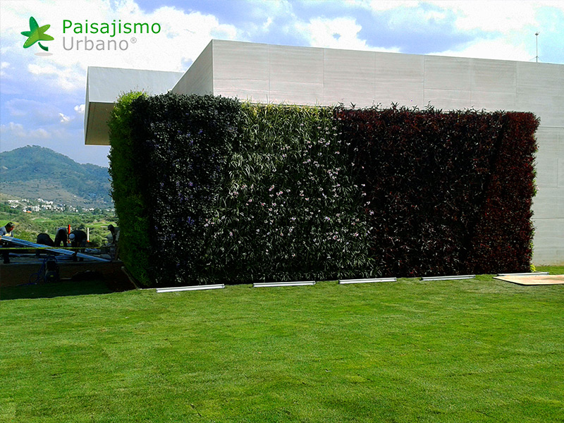 img-muros-verdes-residencia-morelia-mexico-23