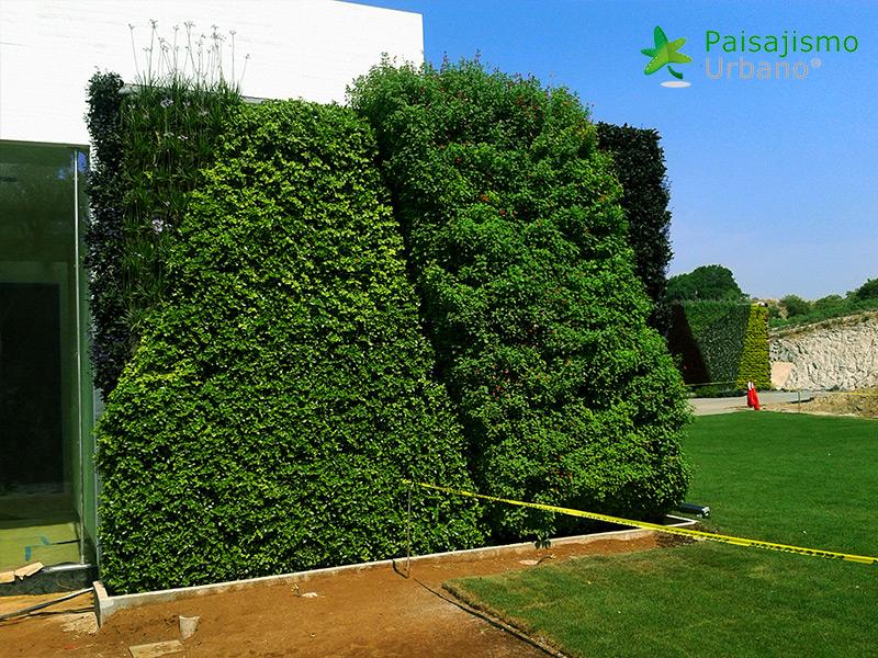 img-muros-verdes-residencia-morelia-mexico-27