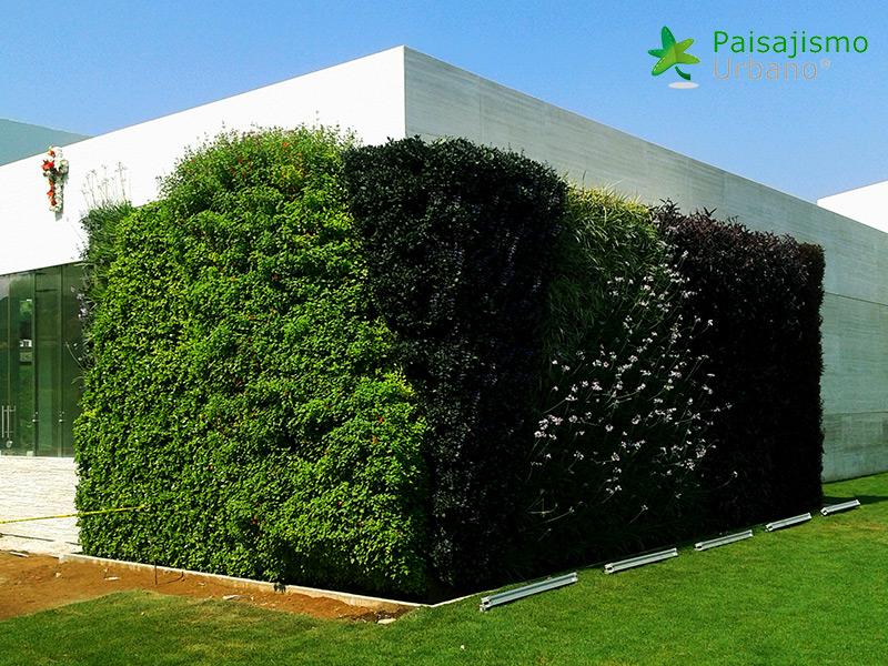 img-muros-verdes-residencia-morelia-mexico-28