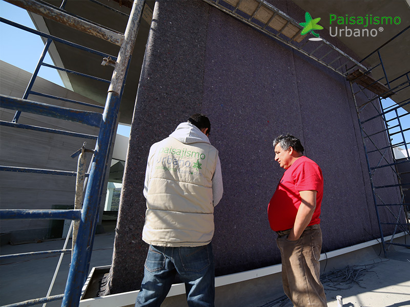 img-muros-verdes-residencia-morelia-mexico-5