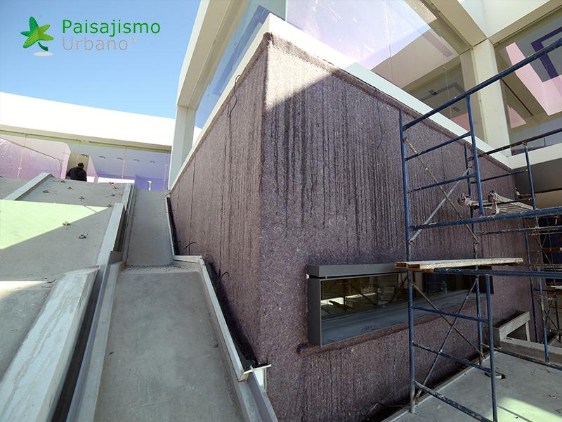 img-muros-verdes-residencia-morelia-mexico-7
