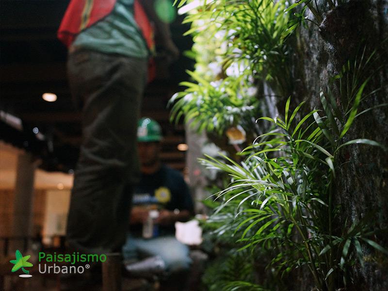 jardines-verticales-restaurante-san-martin-naranjo-mall-guatemala-10
