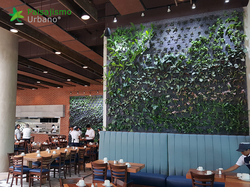 jardines-verticales-restaurante-san-martin-naranjo-mall-guatemala-4