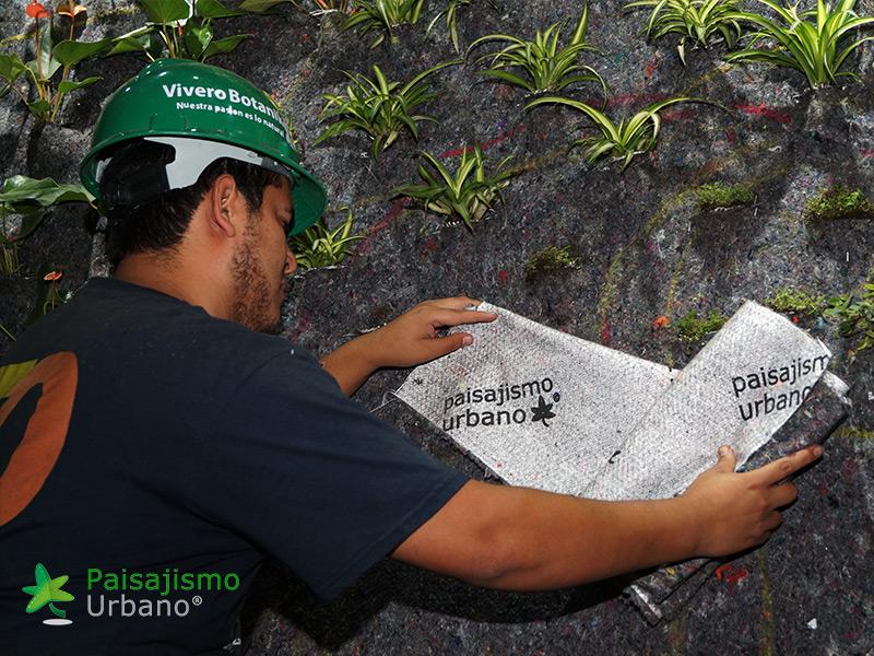 jardines-verticales-restaurante-san-martin-naranjo-mall-guatemala-9