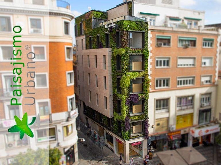 categoria-jardin-vertical-calle-montera-madrid